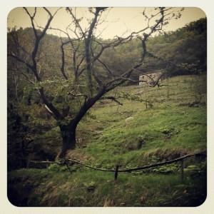 Instagram-Diaries94